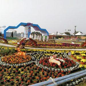 flowershow-2020-8