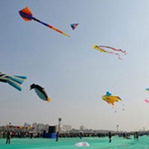 international-kite-festival-2020-4